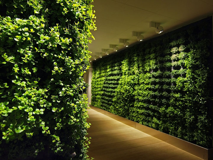 Plant Wall by Greenworks Retail Design Blog