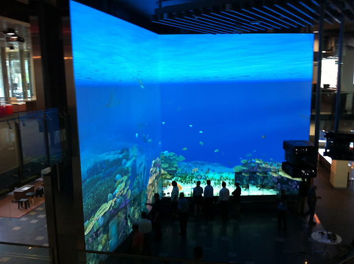 Virtual Exhibition Stand : Virtual reef interactive multitouch installation by pro