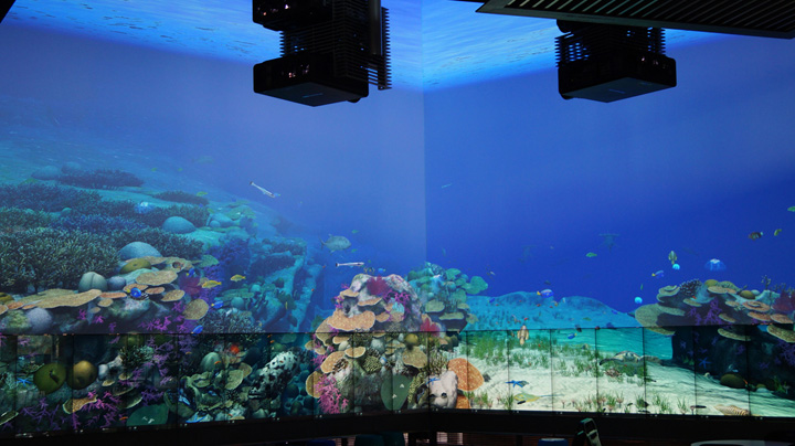 Virtual Reef interactive multitouch installation by Pro AV Solutions