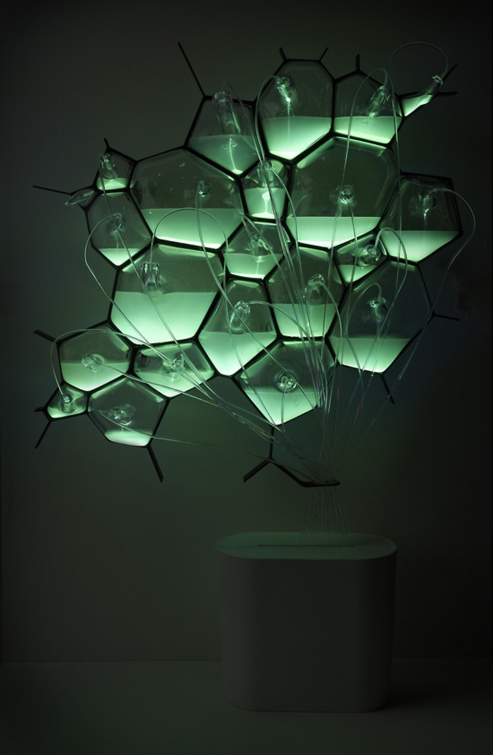 Bio light concept light fixture by philips retail design for Household lighting design