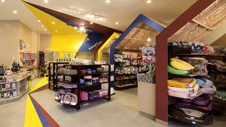 ideas for floor to ceiling partitions - Pets Carnival store by rptecture architects Melbourne