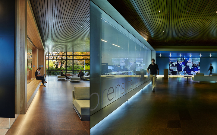 华盛顿雷德蒙Microsoft 办公室设计