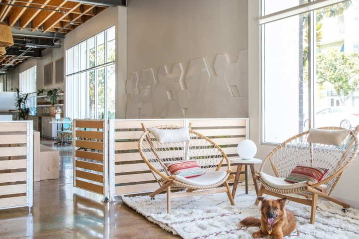 Dogvacay offices by west haddon hall santa monica for Dog hotel santa monica