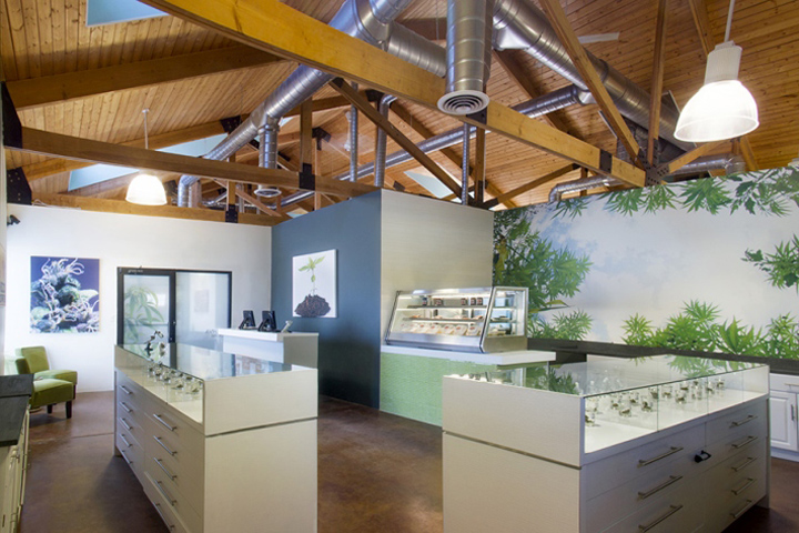 High Style Cannabis Store By The High Road Design Studio