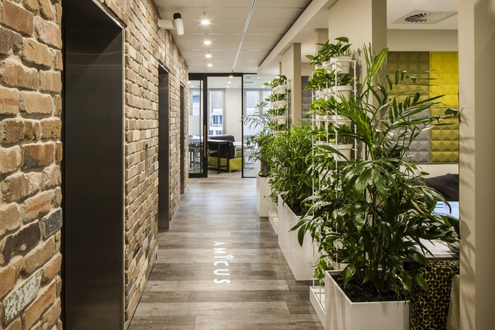 the move and new fitout for the amicus sydney team was motivated purely by the intention to enhance culture productivity and improved ways of working amicus sydney offices