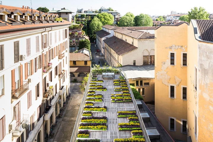 The peculiar structure of flower beds and pallets created by Piuarch on the  roof of their building 314668d747d