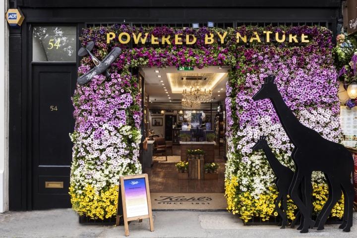 57d4b3de65 beauty   health shop